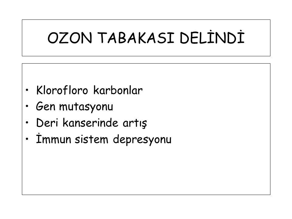 OZON TABAKASI DELİNDİ Klorofloro karbonlar Gen mutasyonu Deri kanserinde artış İmmun sistem depresyonu