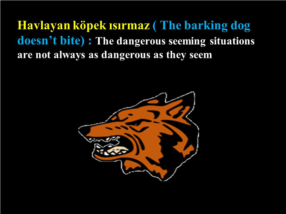Havlayan köpek ısırmaz ( The barking dog doesn't bite) : The dangerous seeming situations are not always as dangerous as they seem 6/29