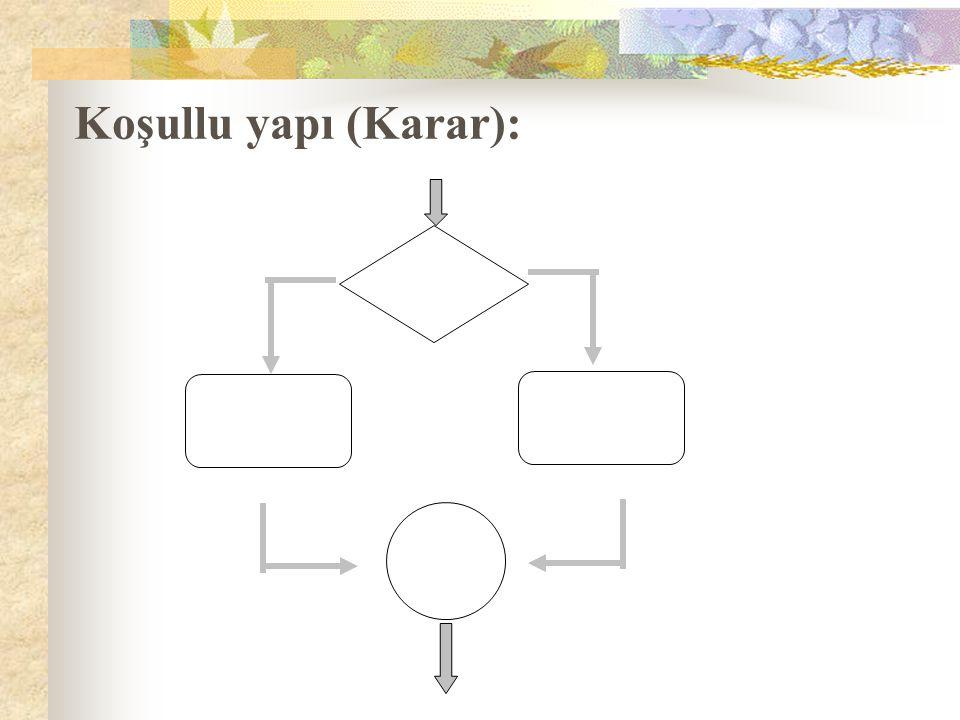 Koşullu yapı (Karar):