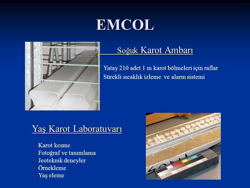 Eski kıyı çizgileri ve deniz seviyesi değişimleri EMCOL Araştırma Uygulamaları