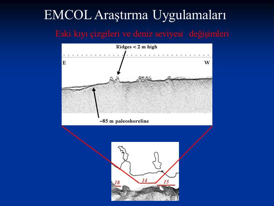 Eski depremlerin tane boyu analizleri ile tanınması ve Cs-137 yöntemi ile tarhlendirilimesi McHugh, Çagatay et al.