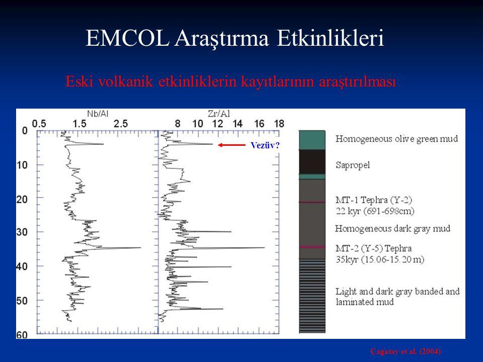 Paleoiklim araştırmacıları desteklenmiş projelerinde (TÜBİTAK, DPT, Araştırma Fonu, EC gibi) EMCOL olanaklarından yararlanabilirler EMCOL ile ilgili gelişmeleri EMCOL web sayfasından izleyebilirsiniz.