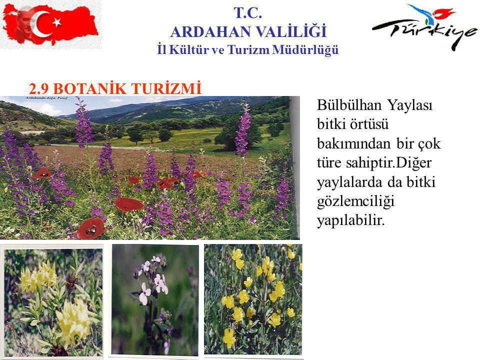 T.C. ARDAHAN VALİLİĞİ İl Kültür ve Turizm Müdürlüğü 2.9 BOTANİK TURİZMİ Bülbülhan Yaylası bitki örtüsü bakımından bir çok türe sahiptir.Diğer yaylalar