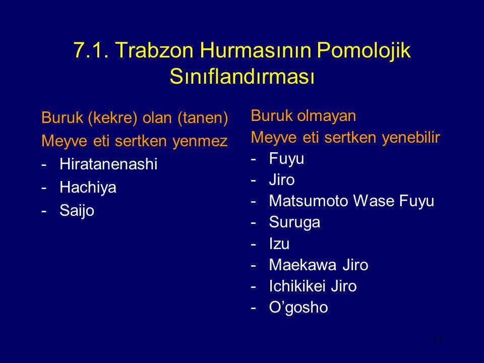 14 7.1. Trabzon Hurmasının Pomolojik Sınıflandırması Buruk (kekre) olan (tanen) Meyve eti sertken yenmez -Hiratanenashi -Hachiya -Saijo Buruk olmayan