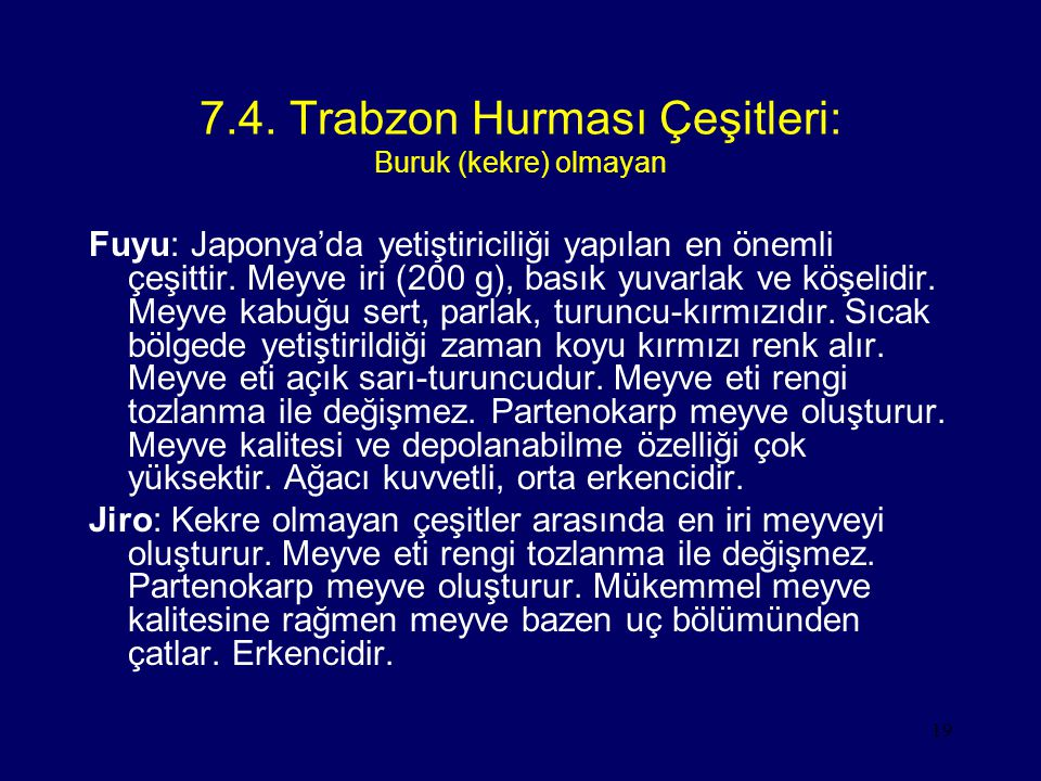 19 7.4. Trabzon Hurması Çeşitleri: Buruk (kekre) olmayan Fuyu: Japonya'da yetiştiriciliği yapılan en önemli çeşittir. Meyve iri (200 g), basık yuvarla
