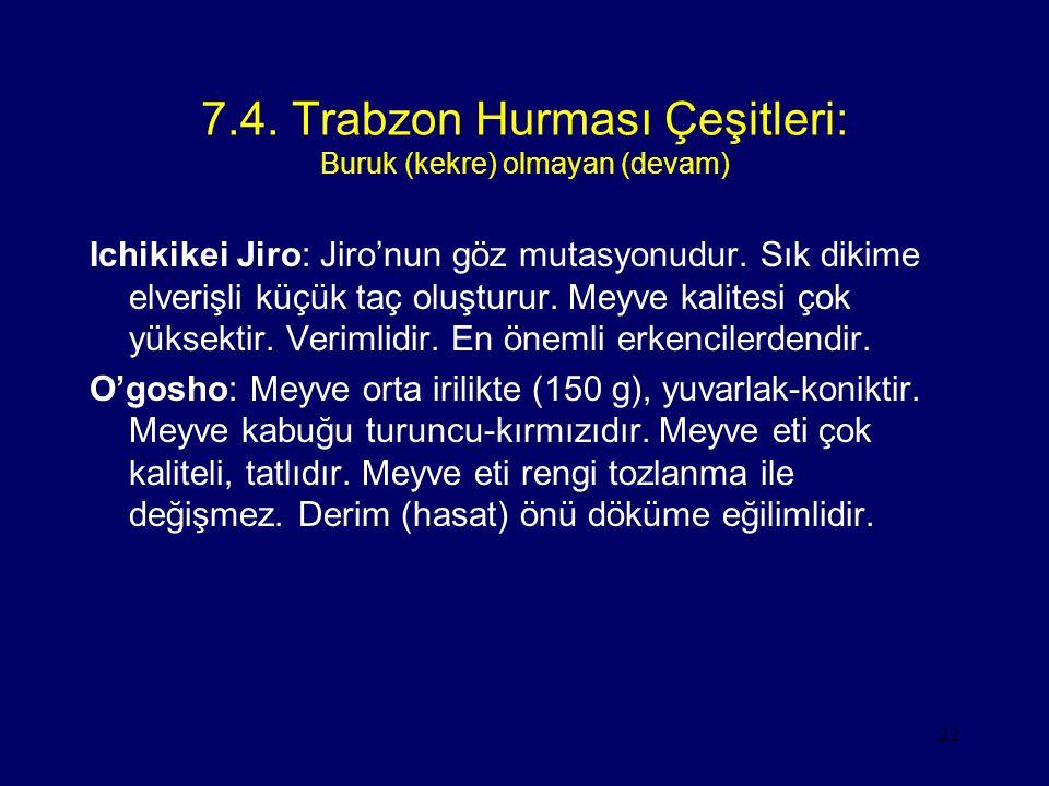 22 7.4. Trabzon Hurması Çeşitleri: Buruk (kekre) olmayan (devam) Ichikikei Jiro: Jiro'nun göz mutasyonudur. Sık dikime elverişli küçük taç oluşturur.