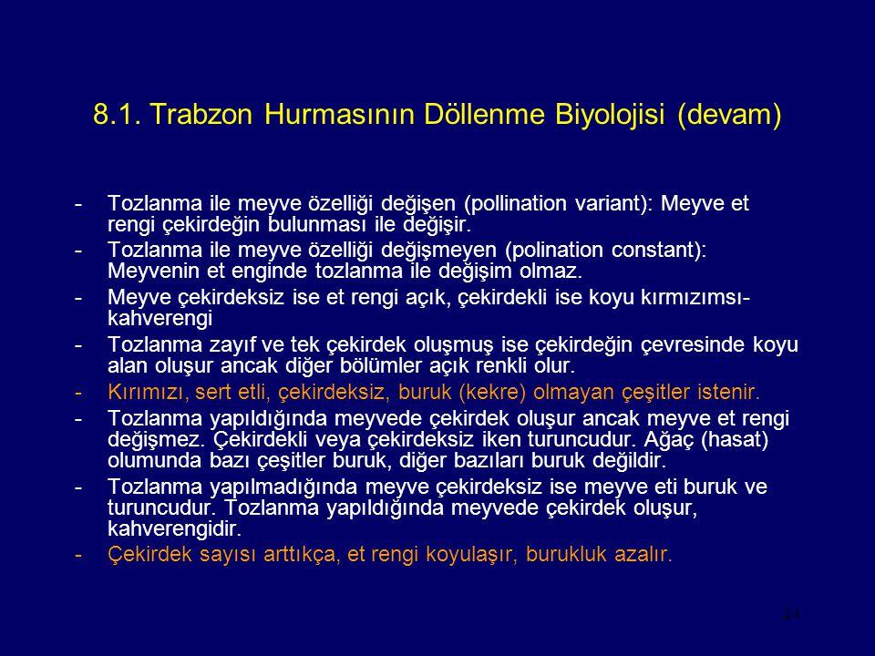 24 8.1. Trabzon Hurmasının Döllenme Biyolojisi (devam) -Tozlanma ile meyve özelliği değişen (pollination variant): Meyve et rengi çekirdeğin bulunması