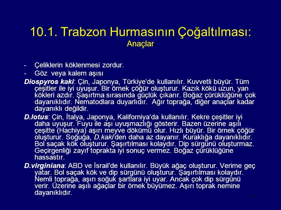 27 10.1. Trabzon Hurmasının Çoğaltılması: Anaçlar -Çeliklerin köklenmesi zordur. -Göz veya kalem aşısı Diospyros kaki: Çin, Japonya, Türkiye'de kullan