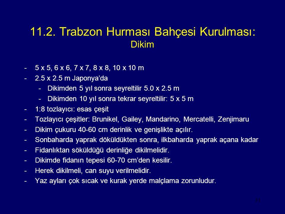 31 11.2. Trabzon Hurması Bahçesi Kurulması: Dikim -5 x 5, 6 x 6, 7 x 7, 8 x 8, 10 x 10 m -2.5 x 2.5 m Japonya'da -Dikimden 5 yıl sonra seyreltilir 5.0