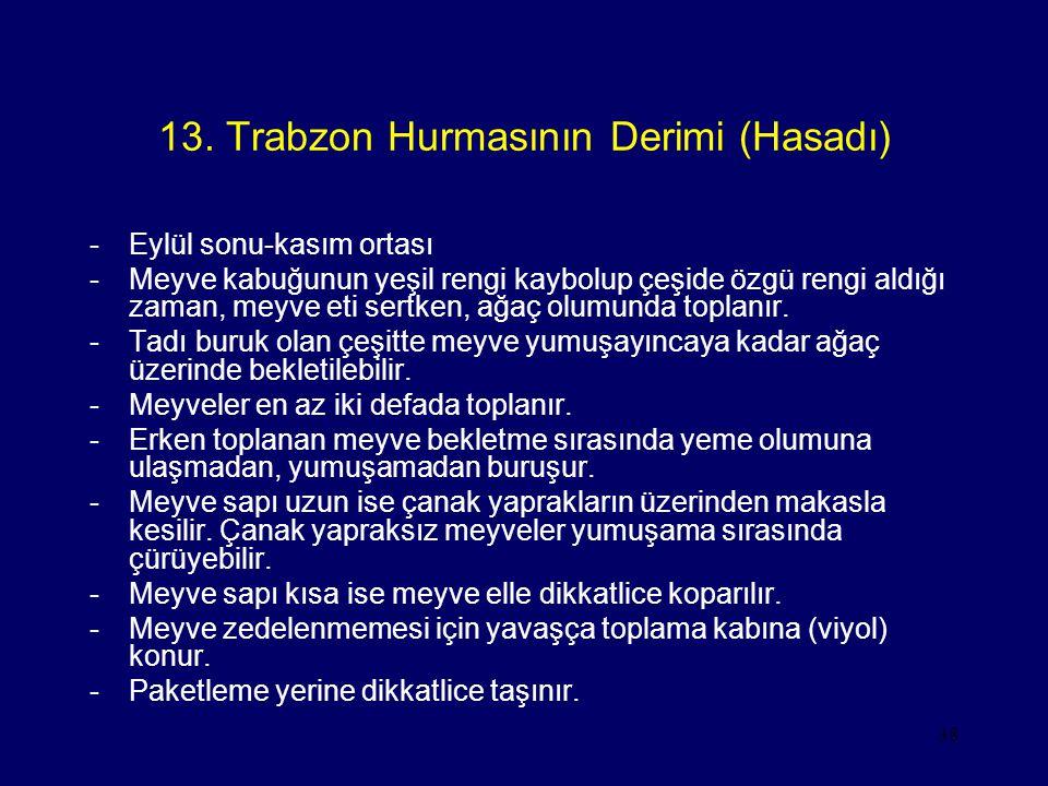 38 13. Trabzon Hurmasının Derimi (Hasadı) -Eylül sonu-kasım ortası -Meyve kabuğunun yeşil rengi kaybolup çeşide özgü rengi aldığı zaman, meyve eti ser