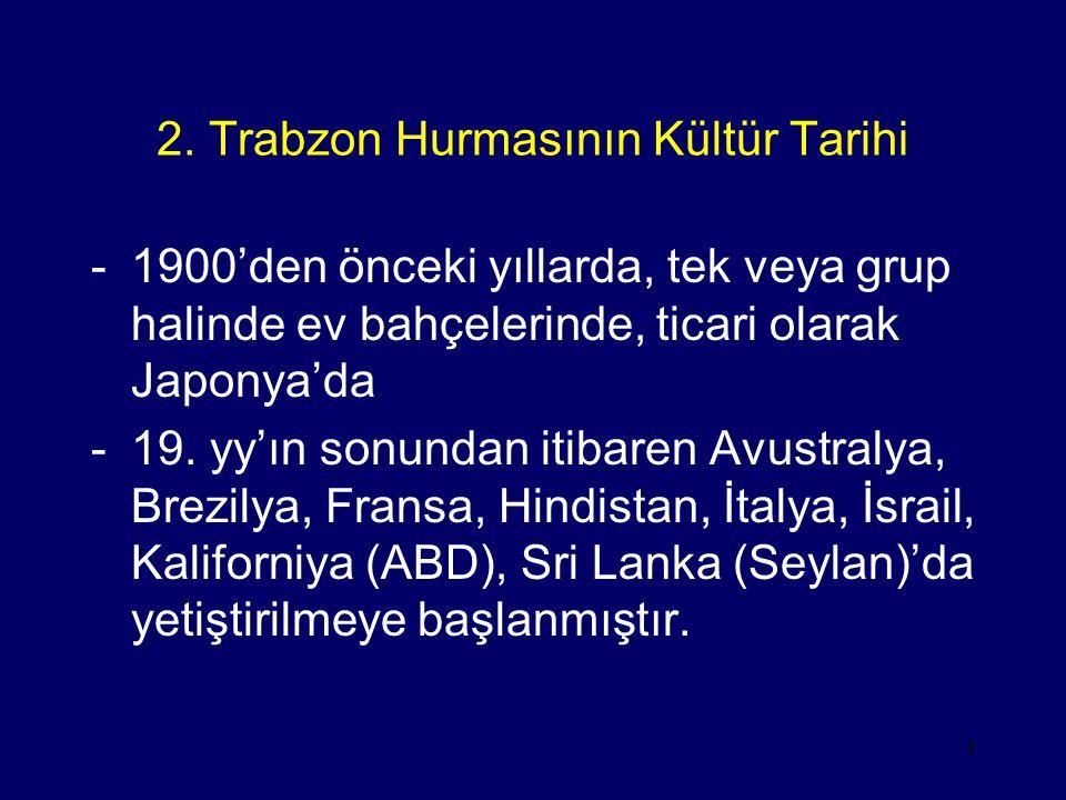 4 2. Trabzon Hurmasının Kültür Tarihi -1900'den önceki yıllarda, tek veya grup halinde ev bahçelerinde, ticari olarak Japonya'da -19. yy'ın sonundan i