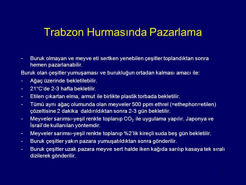 41 Trabzon Hurmasında Pazarlama -Buruk olmayan ve meyve eti sertken yenebilen çeşitler toplandıktan sonra hemen pazarlanabilir. Buruk olan çeşitler yu