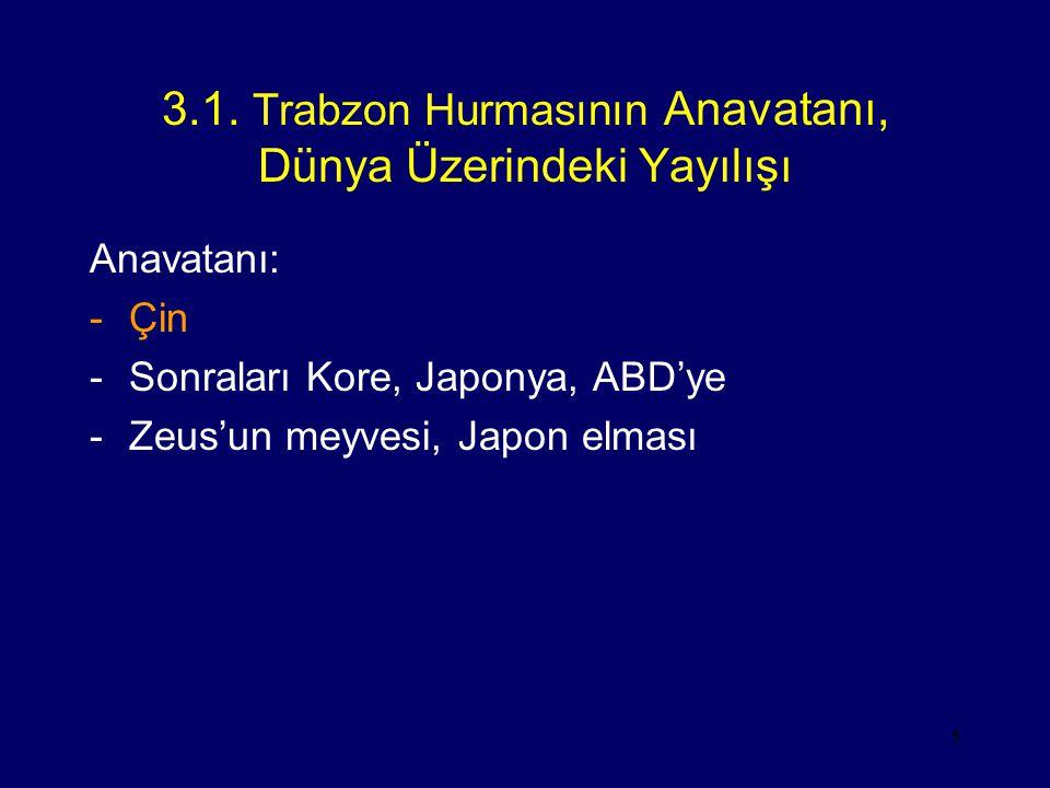 5 3.1. Trabzon Hurmasının Anavatanı, Dünya Üzerindeki Yayılışı Anavatanı: -Çin -Sonraları Kore, Japonya, ABD'ye -Zeus'un meyvesi, Japon elması