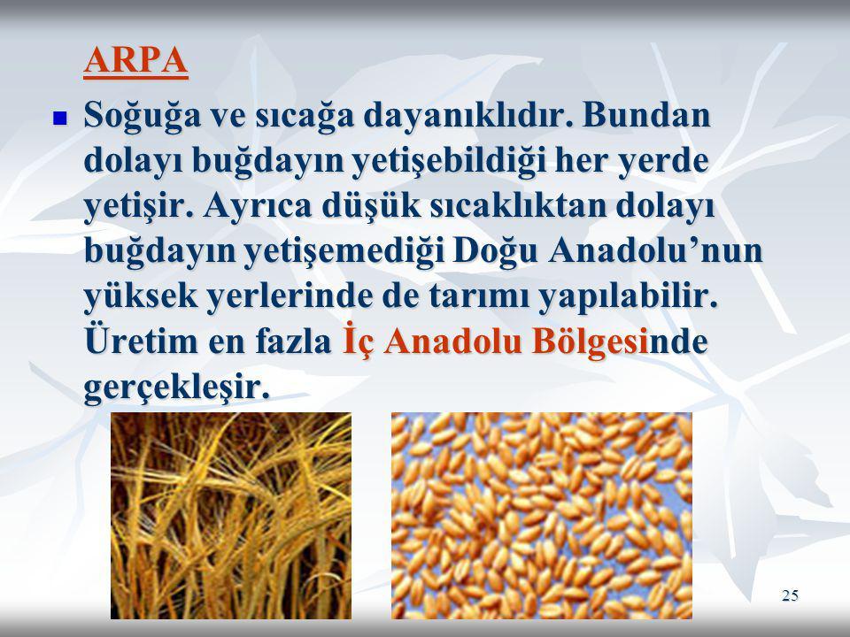 25 ARPA Soğuğa ve sıcağa dayanıklıdır. Bundan dolayı buğdayın yetişebildiği her yerde yetişir. Ayrıca düşük sıcaklıktan dolayı buğdayın yetişemediği D