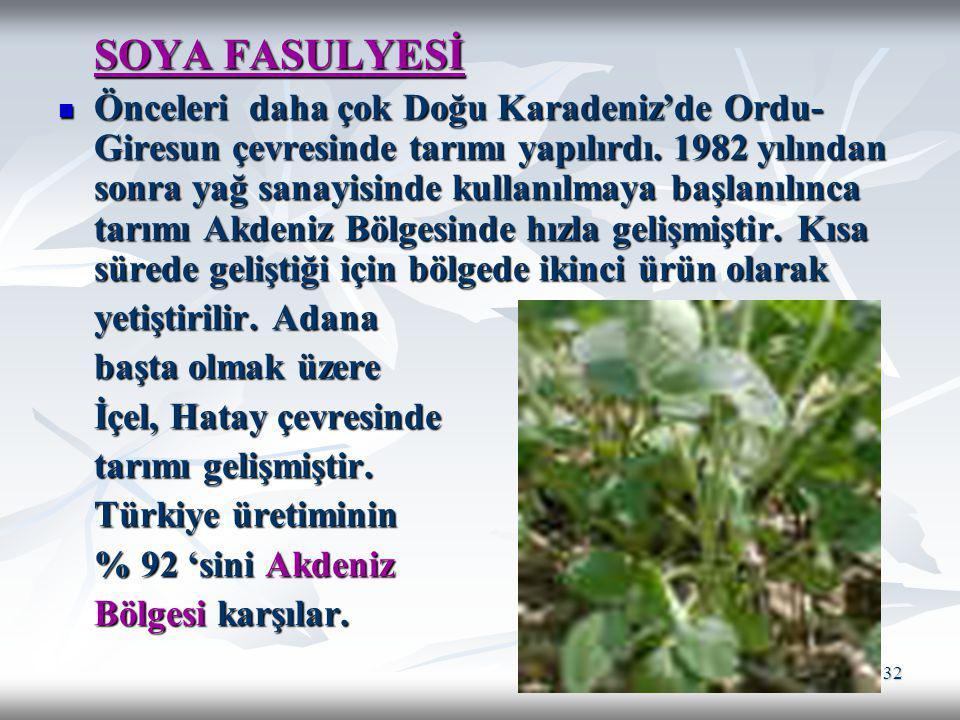 32 SOYA FASULYESİ Önceleri daha çok Doğu Karadeniz'de Ordu- Giresun çevresinde tarımı yapılırdı. 1982 yılından sonra yağ sanayisinde kullanılmaya başl