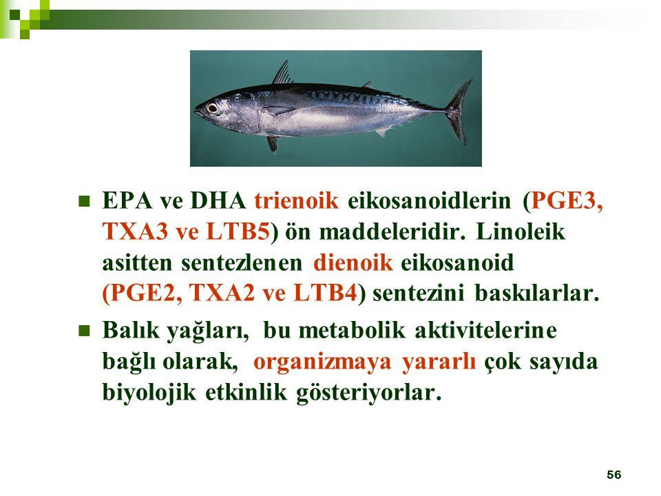 56 EPA ve DHA trienoik eikosanoidlerin (PGE3, TXA3 ve LTB5) ön maddeleridir. Linoleik asitten sentezlenen dienoik eikosanoid (PGE2, TXA2 ve LTB4) sent