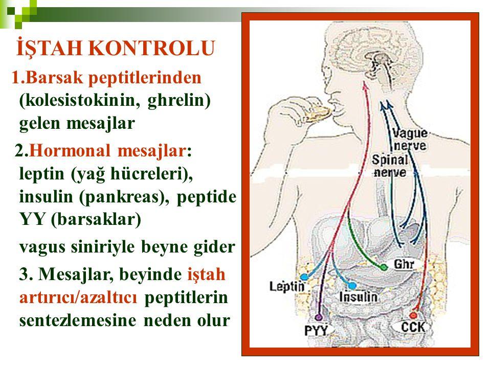 82 İŞTAH KONTROLU 1.Barsak peptitlerinden (kolesistokinin, ghrelin) gelen mesajlar 2.Hormonal mesajlar: leptin (yağ hücreleri), insulin (pankreas), pe