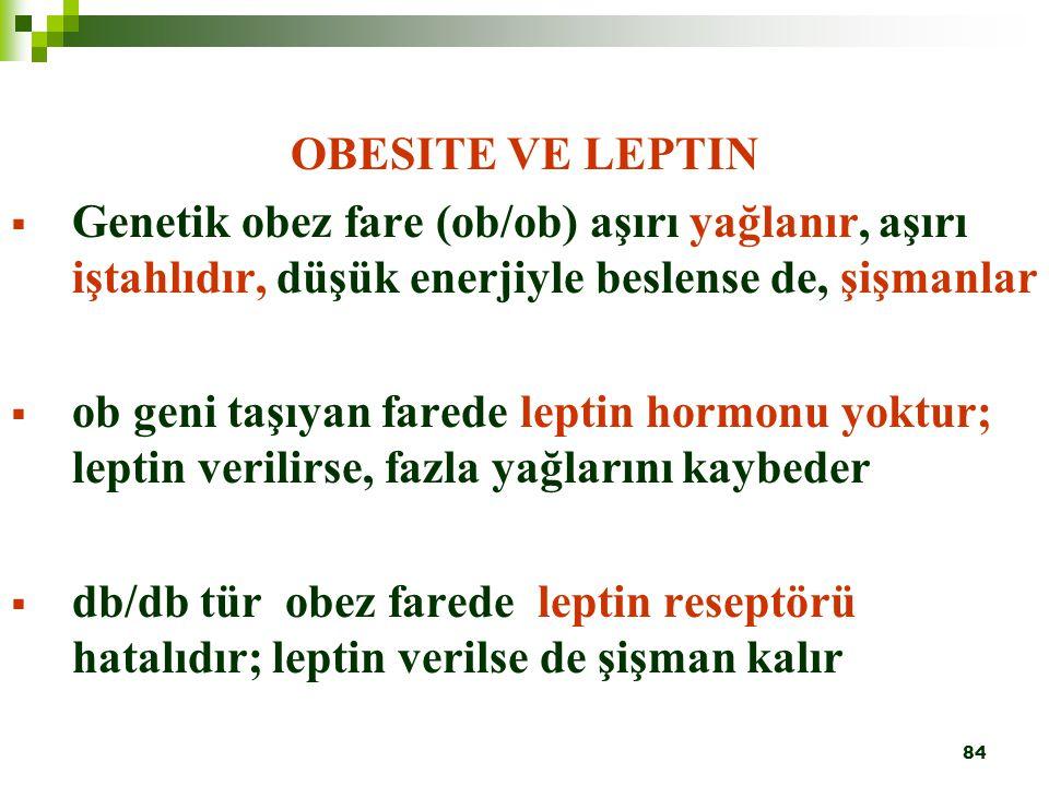 84 OBESITE VE LEPTIN  Genetik obez fare (ob/ob) aşırı yağlanır, aşırı iştahlıdır, düşük enerjiyle beslense de, şişmanlar  ob geni taşıyan farede lep