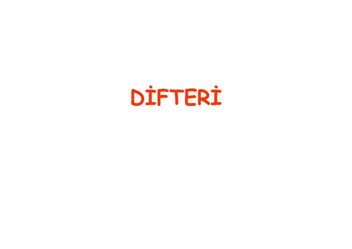 DİFTERİ