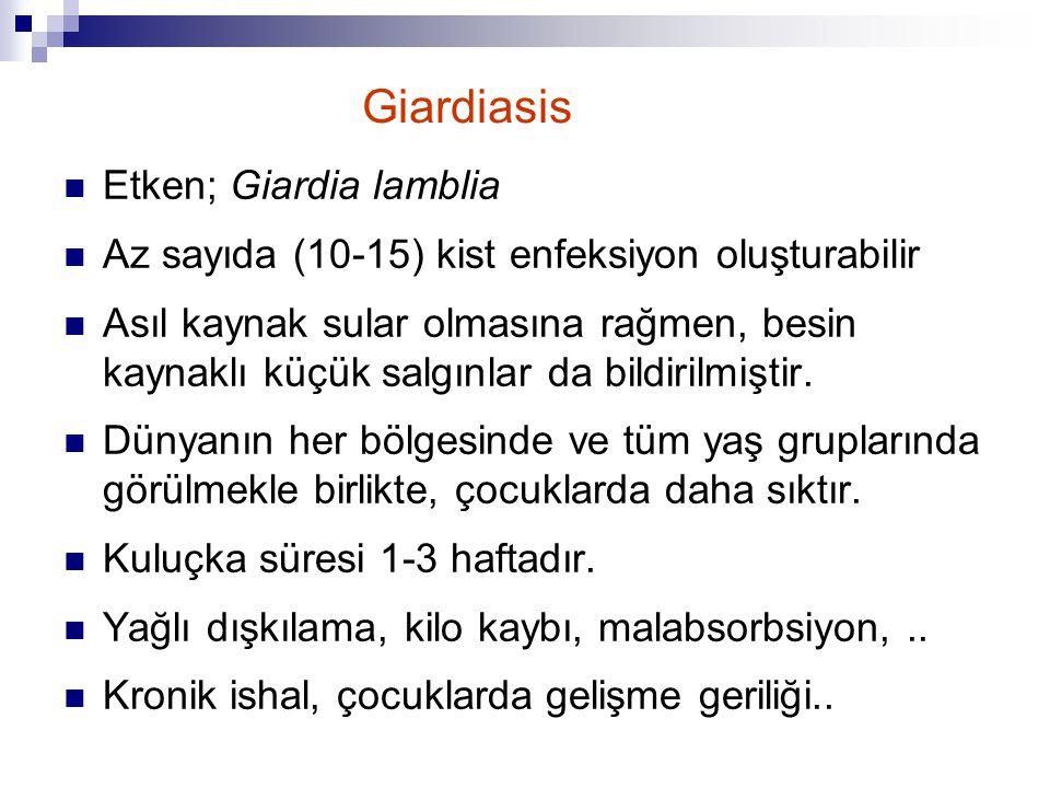 Giardiasis Etken; Giardia lamblia Az sayıda (10-15) kist enfeksiyon oluşturabilir Asıl kaynak sular olmasına rağmen, besin kaynaklı küçük salgınlar da