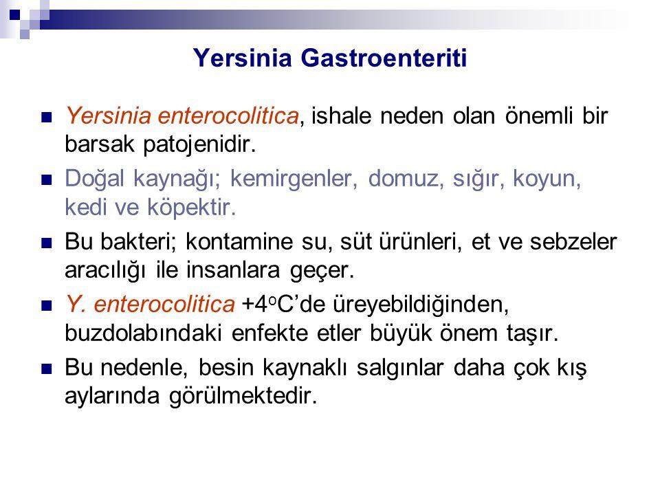 Yersinia Gastroenteriti Yersinia enterocolitica, ishale neden olan önemli bir barsak patojenidir. Doğal kaynağı; kemirgenler, domuz, sığır, koyun, ked