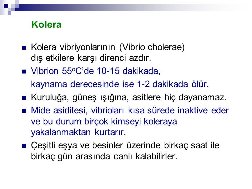 Kolera Kolera vibriyonlarının (Vibrio cholerae) dış etkilere karşı direnci azdır. Vibrion 55 o C'de 10-15 dakikada, kaynama derecesinde ise 1-2 dakika