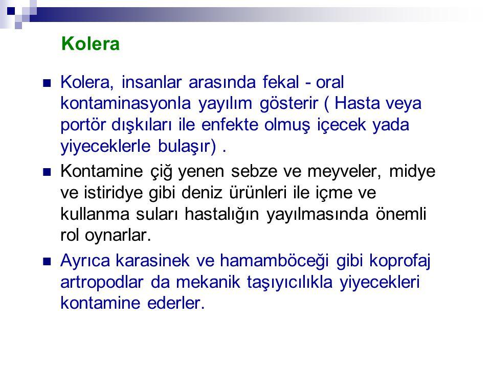 Kolera Kolera, insanlar arasında fekal - oral kontaminasyonla yayılım gösterir ( Hasta veya portör dışkıları ile enfekte olmuş içecek yada yiyeceklerl