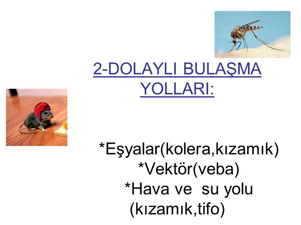 2-DOLAYLI BULAŞMA YOLLARI: *Eşyalar(kolera,kızamık) *Vektör(veba) *Hava ve su yolu (kızamık,tifo)