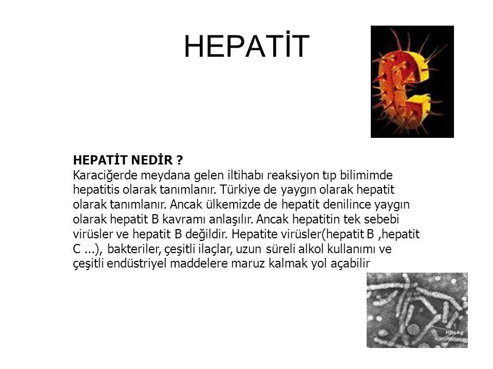 HEPATİT HEPATİT NEDİR .