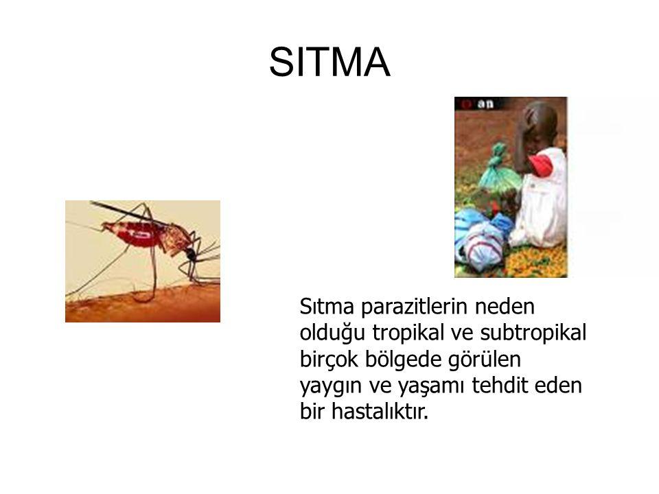 SITMA Sıtma parazitlerin neden olduğu tropikal ve subtropikal birçok bölgede görülen yaygın ve yaşamı tehdit eden bir hastalıktır.
