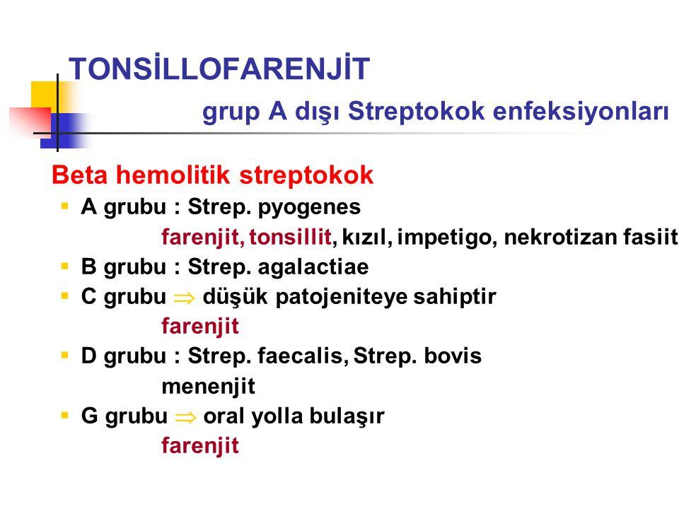Beta hemolitik streptokok  A grubu : Strep. pyogenes farenjit, tonsillit, kızıl, impetigo, nekrotizan fasiit  B grubu : Strep. agalactiae  C grubu