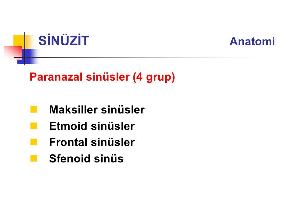 Paranazal sinüsler (4 grup) Maksiller sinüsler Etmoid sinüsler Frontal sinüsler Sfenoid sinüs SİNÜZİT Anatomi