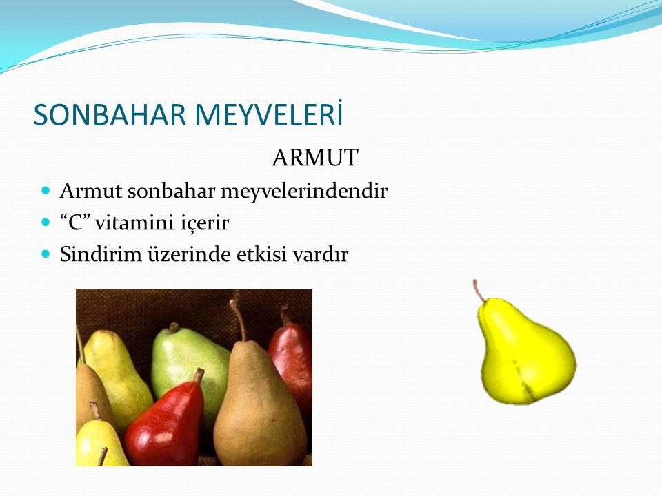 """SONBAHAR MEYVELERİ ELMA Elma bir sonbahar meyvesidir """"A"""" ve """"C"""" vitaminleri içerir Sindirimi kolaylaştırır"""