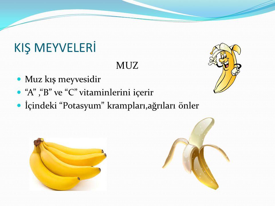 """SONBAHAR MEYVELERİ ARMUT Armut sonbahar meyvelerindendir """"C"""" vitamini içerir Sindirim üzerinde etkisi vardır"""