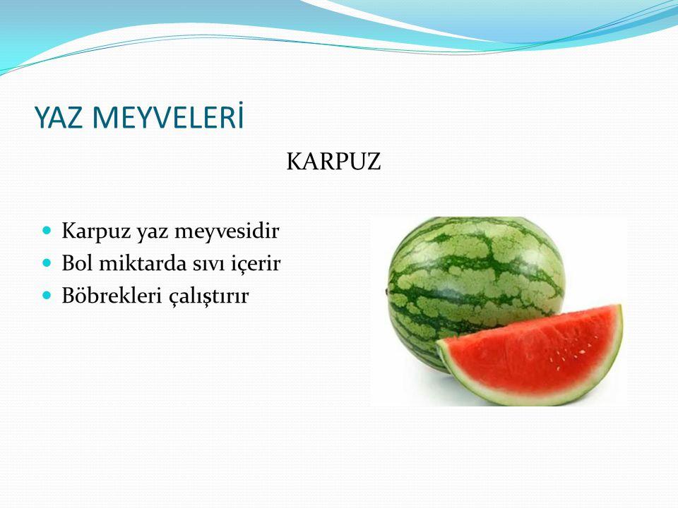 YAZ MEYVELERİ ÜZÜM Üzüm yaz meyvelerindendir Kan yapar,kanı temizler Yüksek tansiyonu düşürür,besleyicidir