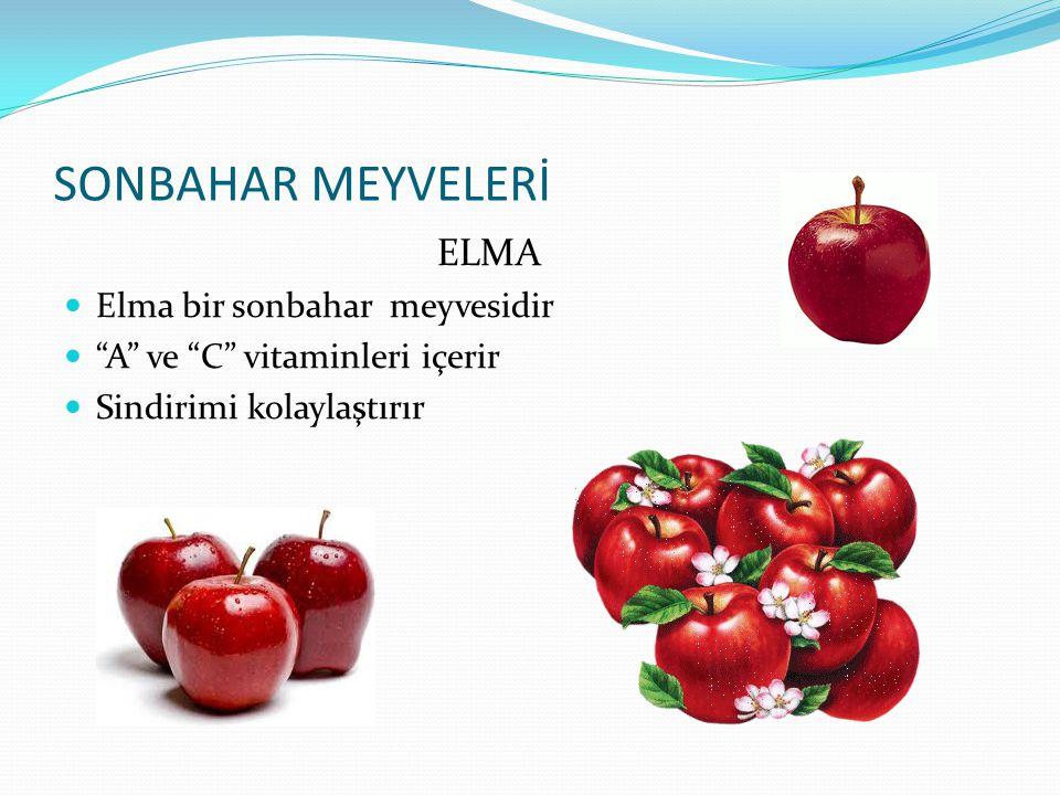 """YAZ MEYVELERİ KİVİ Kivi yaz meyvelerindendir """"C"""" vitamini bakımından zengindir Sindirimi kolaylaştırır, serinleticidir"""
