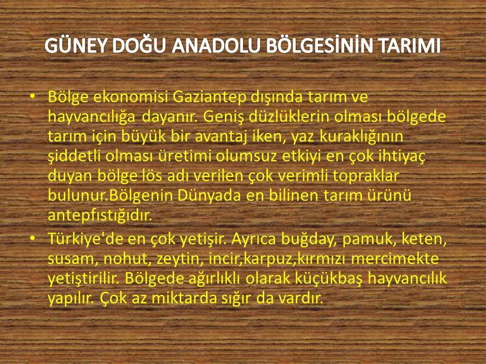 Bölge ekonomisi Gaziantep dışında tarım ve hayvancılığa dayanır.