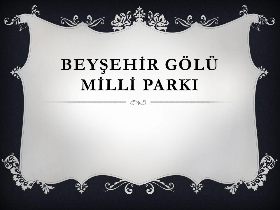 EŞREFOĞLU CAMİSİ Beyşehir gölü kıyısında ilk kez Selçuklu hükümdarı Sultan Sancar tarafından 1134 yaptırılmıştır.Anadolunun ağaç çatı ve direkli,düz tavanlı ulu camilerin en büyüğü,en estetiği,en özgünü ve günümüze kalabilmiştir.