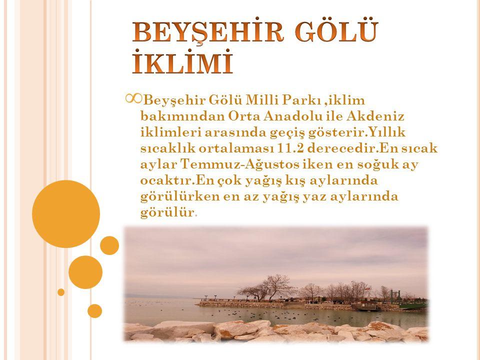 ∞ Beyşehir Gölü Milli Parkı,iklim bakımından Orta Anadolu ile Akdeniz iklimleri arasında geçiş gösterir.Yıllık sıcaklık ortalaması 11.2 derecedir.En sıcak aylar Temmuz-Ağustos iken en soğuk ay ocaktır.En çok yağış kış aylarında görülürken en az yağış yaz aylarında görülür.