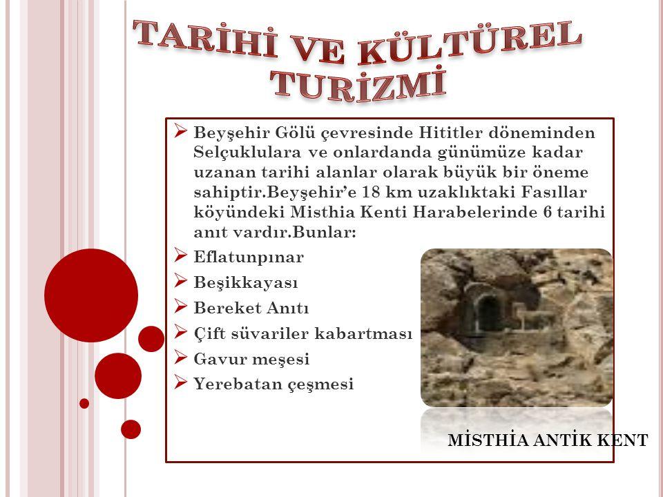  Beyşehir Gölü çevresinde Hititler döneminden Selçuklulara ve onlardanda günümüze kadar uzanan tarihi alanlar olarak büyük bir öneme sahiptir.Beyşehi
