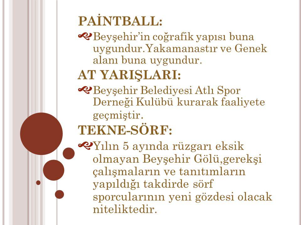 PAİNTBALL:  Beyşehir'in coğrafik yapısı buna uygundur.Yakamanastır ve Genek alanı buna uygundur.