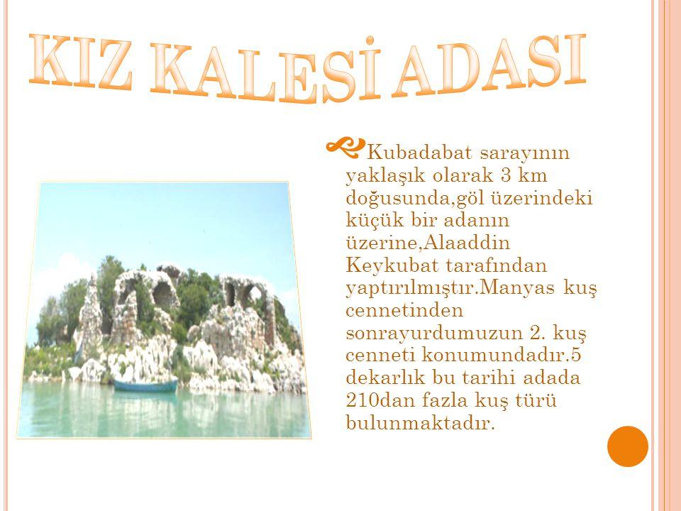  Kubadabat sarayının yaklaşık olarak 3 km doğusunda,göl üzerindeki küçük bir adanın üzerine,Alaaddin Keykubat tarafından yaptırılmıştır.Manyas kuş ce
