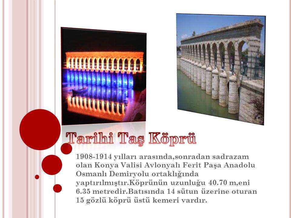 1908-1914 yılları arasında,sonradan sadrazam olan Konya Valisi Avlonyalı Ferit Paşa Anadolu Osmanlı Demiryolu ortaklığında yaptırılmıştır.Köprünün uzu