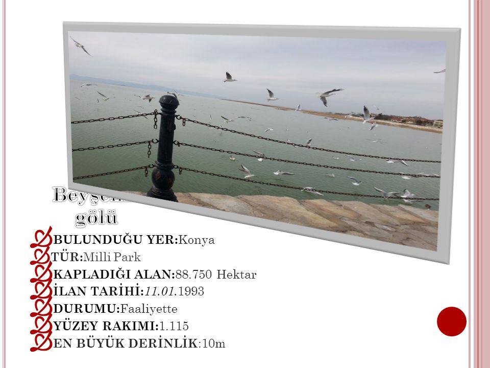 1908-1914 yılları arasında,sonradan sadrazam olan Konya Valisi Avlonyalı Ferit Paşa Anadolu Osmanlı Demiryolu ortaklığında yaptırılmıştır.Köprünün uzunluğu 40.70 m,eni 6.35 metredir.Batısında 14 sütun üzerine oturan 15 gözlü köprü üstü kemeri vardır.
