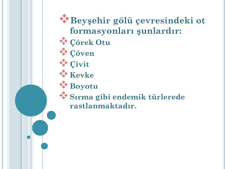 Beyşehir gölü çevresindeki ot formasyonları şunlardır:  Çörek Otu  Çöven  Çivit  Kevke  Boyotu  Sırma gibi endemik türlerede rastlanmaktadır.