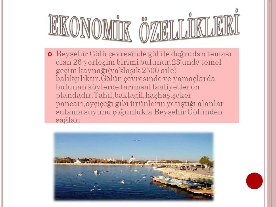 Beyşehir Gölü çevresinde göl ile doğrudan teması olan 26 yerleşim birimi bulunur.23'ünde temel geçim kaynağı(yaklaşık 2500 aile) balıkçılıktır.Gölün ç