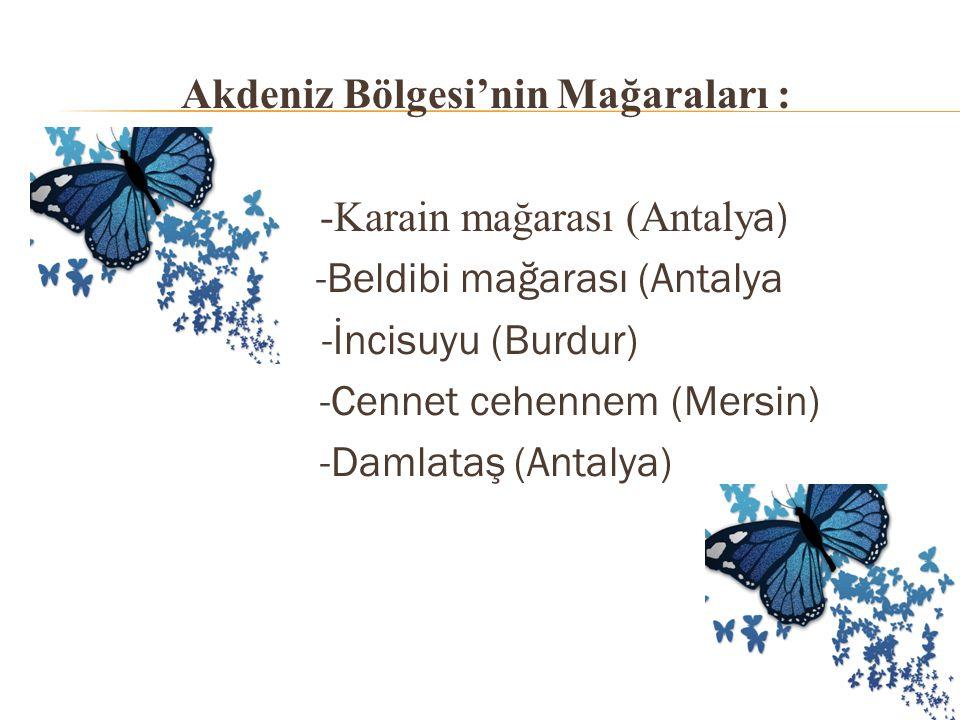 Akdeniz Bölgesi'nin Mağaraları : -Karain mağarası (Antaly a) -Beldibi mağarası (Antalya -İncisuyu (Burdur) -Cennet cehennem (Mersin) -Damlataş (Antalya)