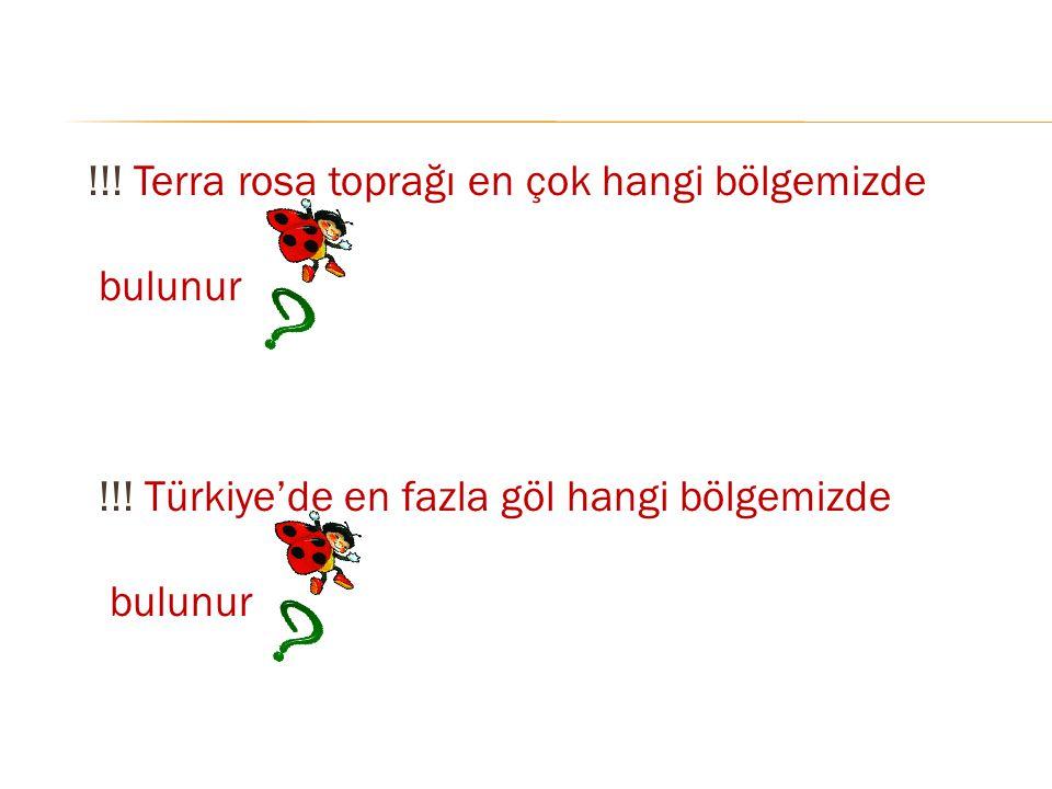 !!! Terra rosa toprağı en çok hangi bölgemizde bulunur !!! Türkiye'de en fazla göl hangi bölgemizde bulunur