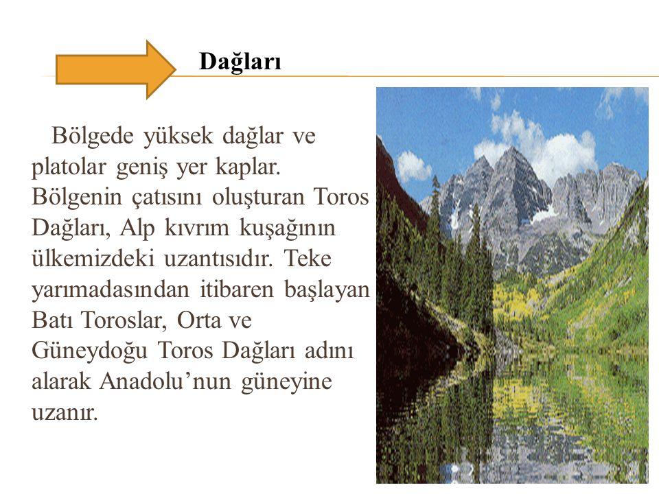Dağları Bölgede yüksek dağlar ve platolar geniş yer kaplar. Bölgenin çatısını oluşturan Toros Dağları, Alp kıvrım kuşağının ülkemizdeki uzantısıdır. T
