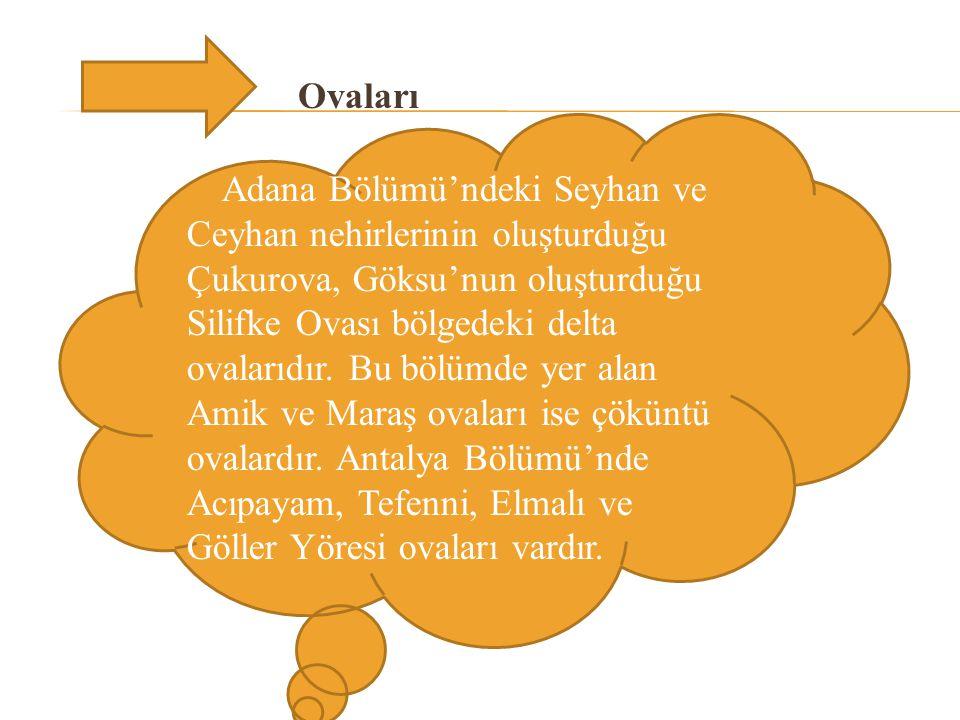 Ovaları Adana Bölümü'ndeki Seyhan ve Ceyhan nehirlerinin oluşturduğu Çukurova, Göksu'nun oluşturduğu Silifke Ovası bölgedeki delta ovalarıdır.